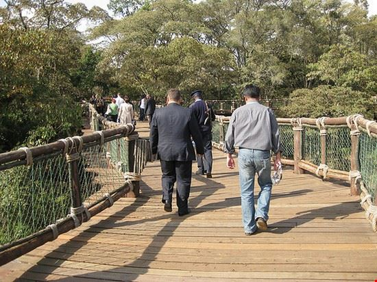 37277 nairobi nairobi safari walk