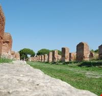 area degli scavi etruschi tarquinia