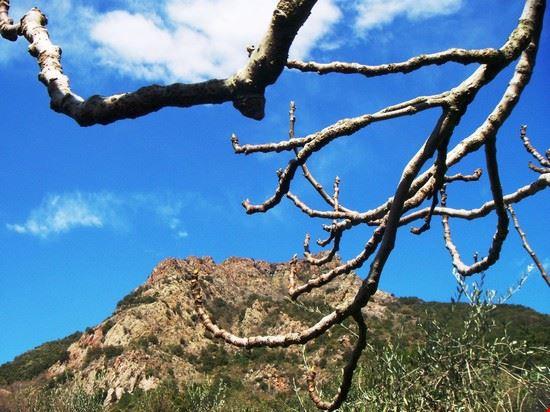 Monte Tregin