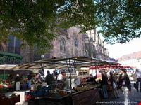 muensterplatz con mercato friburgo