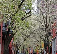 39028 boston beaconhill a boston