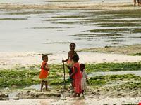 Kiwengwa childrens