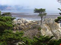 pebble beach san francisco
