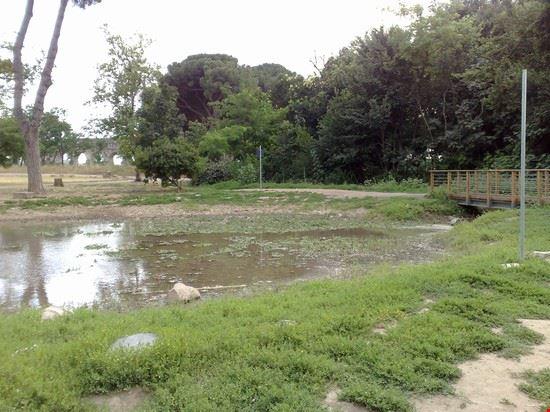 39960 parco degli acquedotti stagno roma