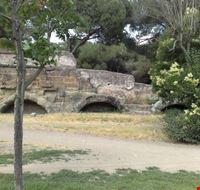 39962 rovine acquedotti romani roma