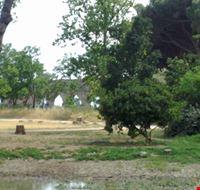 39963 archi  parco degli acquedotti roma