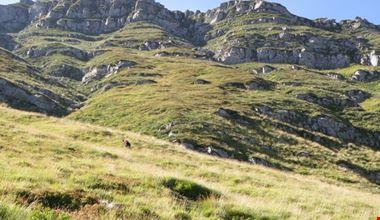 parco naturale regionale del Corno alle scale