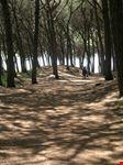 cecina auf dem weg zum strand von cecina