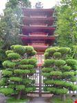 il giardino giapponese san francisco