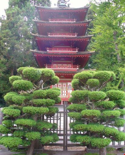 Giardino D Inverno Giapponese : Foto il giardino giapponese a san francisco
