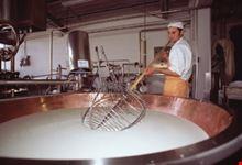 reggio emilia la preparazione del parmigiano reggiano