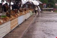 The Oscypek Cheese Market