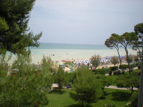 veduta pineta spiaggia pineto
