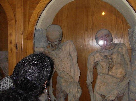 41614 urbania mummie