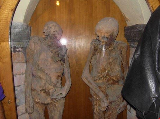 mummia di urbania