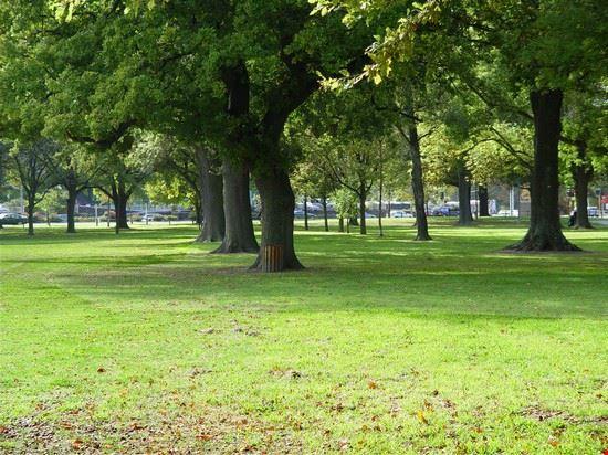 christchurch herbst im hagley park