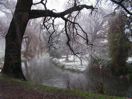 christchurch verschneiter wintertag im hagley park
