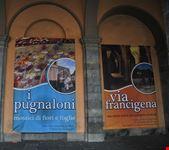Il manifesto della Festa dei Pugnaloni di Maggio