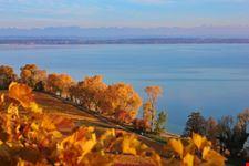 Lago di Neuchatel