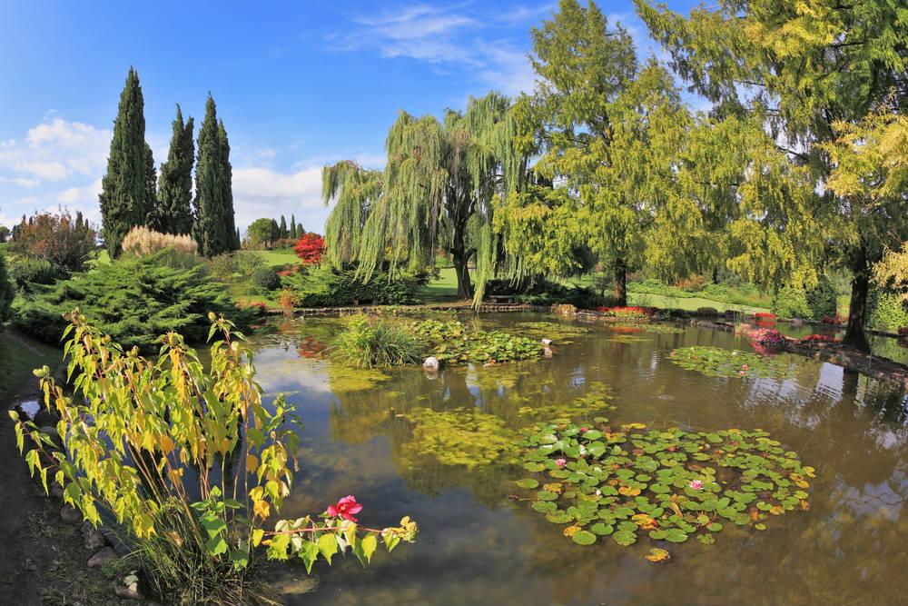 Parco Giardino Sigurtà - Parchi e giardini a Valeggio sul Mincio