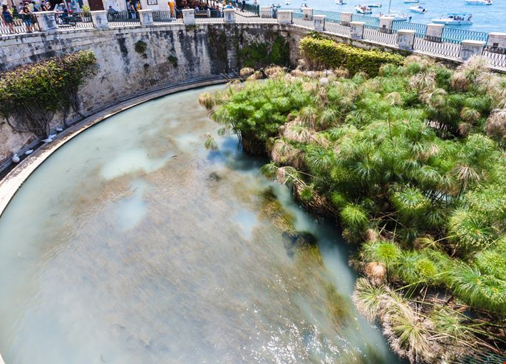 La Fonte Arethusa