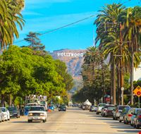 424011411181219 Hollywood 602810696