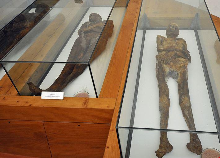 424012104170349 mummie-di-venzone