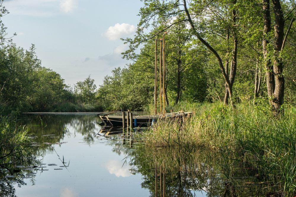 Parco nazionale De Weerribben-Wieden