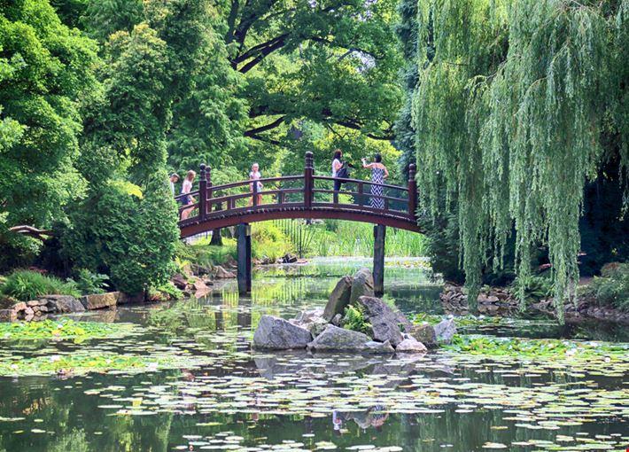 Foto giardini giapponesi a wroclaw info for Giardini giapponesi