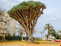 Parco Genovés