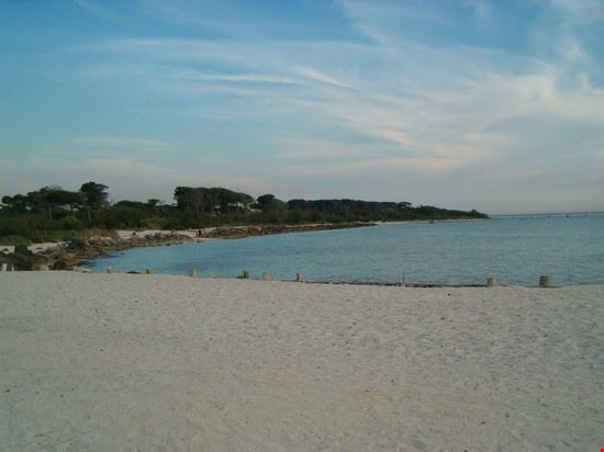 Vada - Spiaggia bianca