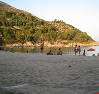 Fetovaia
