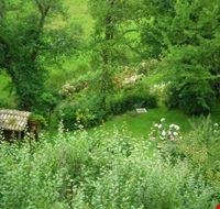 La verde vallata