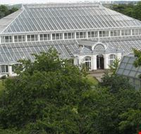 43390 kew gardens temperate house londra