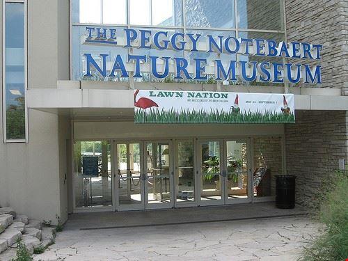 43393 chicago peggy notebaert nature museum