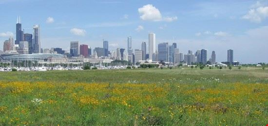 43919 chicago northerly island park