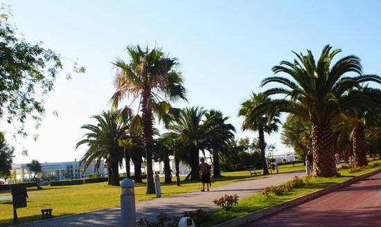 Foto lungomare centro a porto sant 39 elpidio 550x328 - Ristorante il giardino porto sant elpidio ...