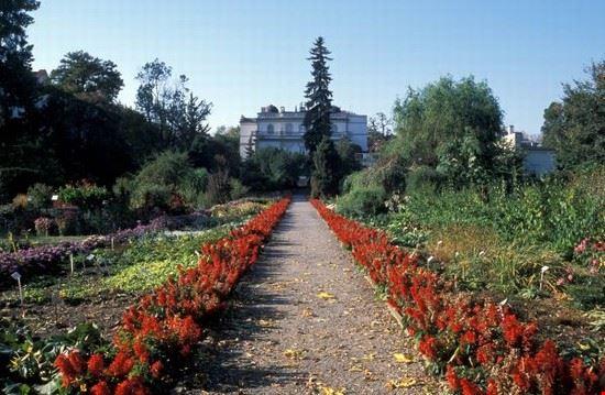 44606 cracow ogrod botaniczny