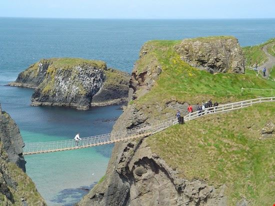 The Rope Bridge