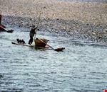 pesca guilin