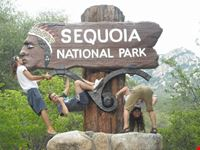 welcome sequoia national park