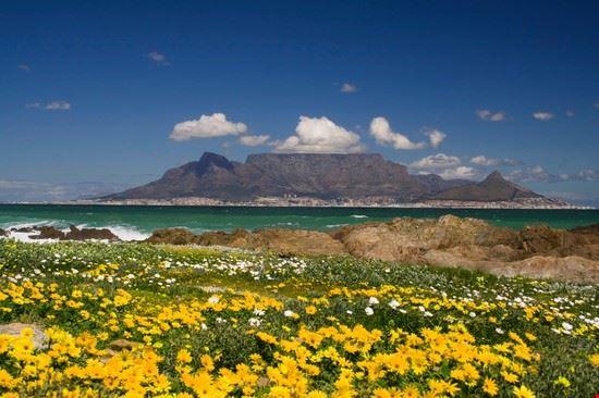 le cap cape town en afrique du sud