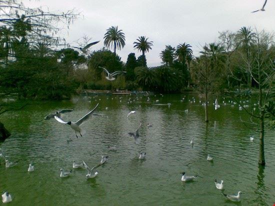 Foto parco della cittadella lago delle antre a for Lago arredo cittadella