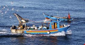 Barche pescatori