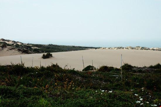 45484 praia do guincho cascais