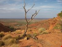 king s canyon national park-vicinanze ayers rock adelaide