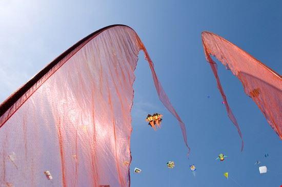 cervia drachen und flaggen