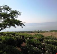 panorama del lago Tiberiade