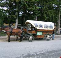 trasporti... alternativi!
