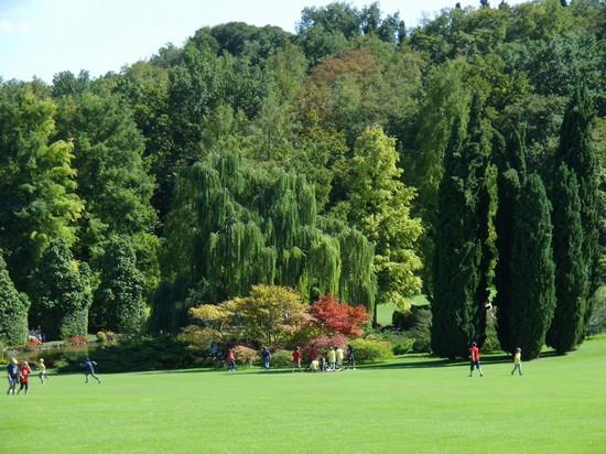 Foto parco giardino sigurt a valeggio sul mincio 550x412 autore simonetta stuani 19 di 23 - Parco giardino sigurta valeggio sul mincio vr ...